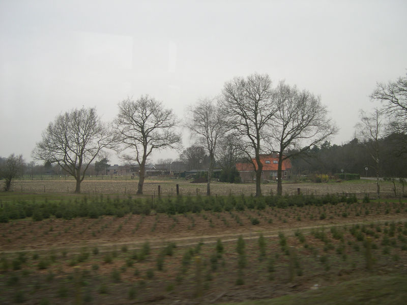 First countryside views from the train