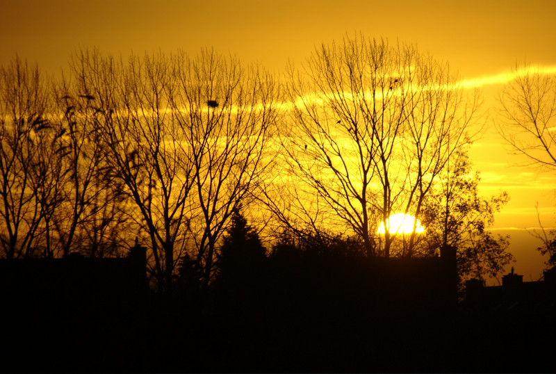 Sunrise in Roermond, The Netherlands.
