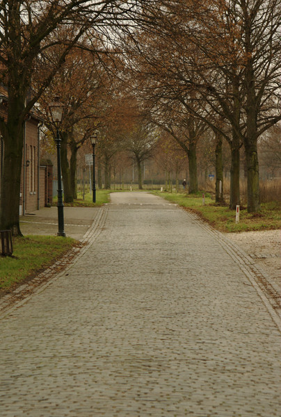 An old cobble-stone road lined with trees showing their autumn colors. This road is in a small town called Linen, near Roermond in the Netherlands.