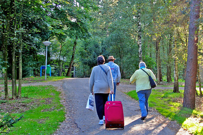 Arriving at Landal Het Roekenbosch  - such a peaceful spot - the cottages are hidden by the trees.