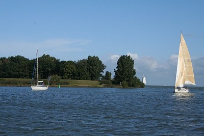 Yachts sailing on the IJsselmeer.