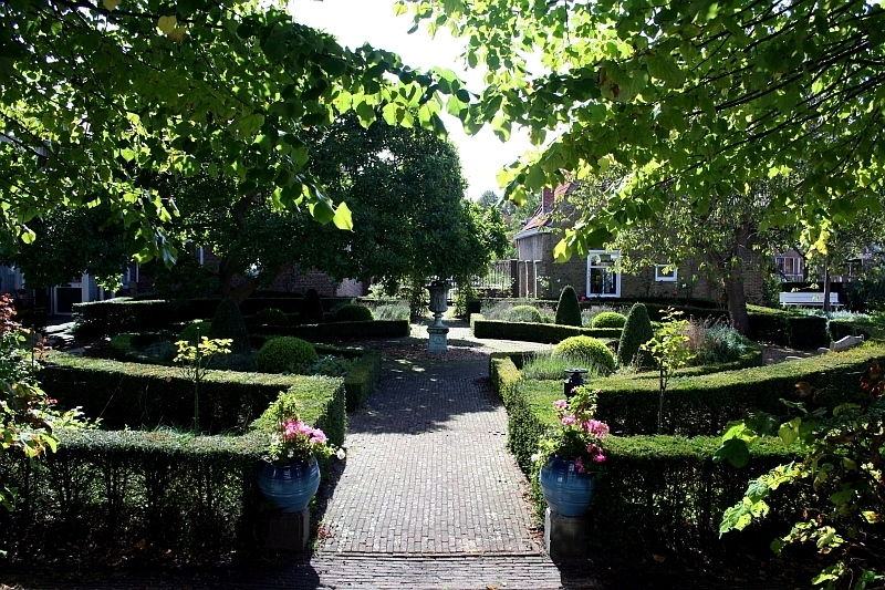I stood on the orphanage steps to take this photo of the beautiful garden.