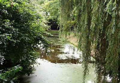 Taken from one of the little park bridges.