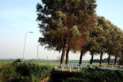 Walk from Oostwoud to Midwoud, Netherlands