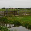 Fields at Zaanse Schans