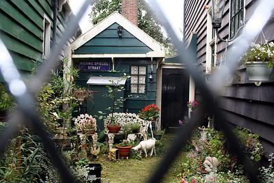 Peeping through the gate into someones garden