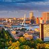 Rotterdam Panorama.