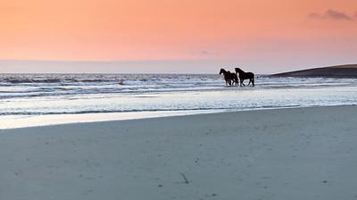 Idyllic twilight at North Sea