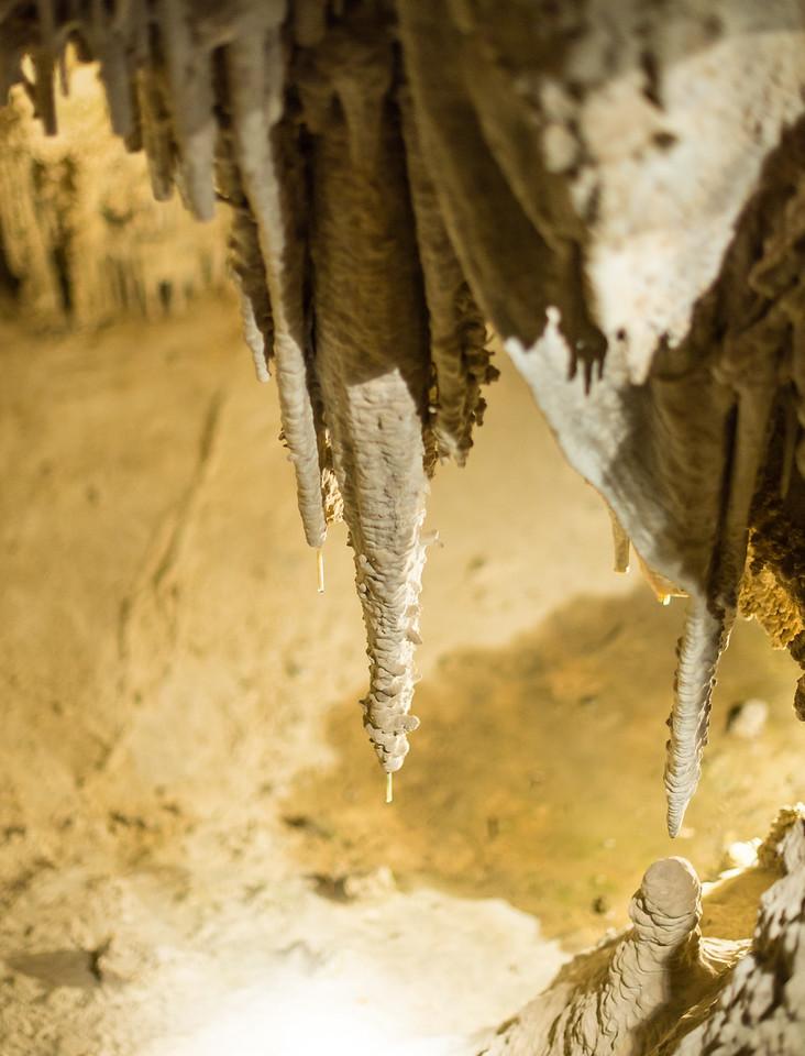 Expanding Stalactites, Lehman Caves in Great Basin National Park, Nevada - April 2016