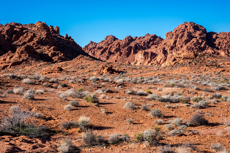 The landscape of the Valley of Fire