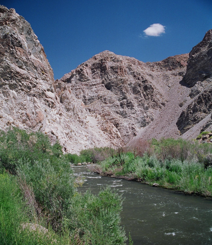 Walker River, near Yerington, NV