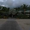Nevis 07 244