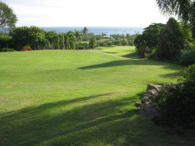 Nevis 07 216
