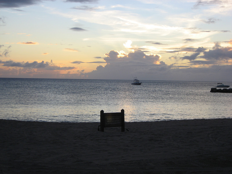 Nevis 07 228