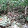 Nevis 07 059