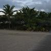 Nevis 07 243
