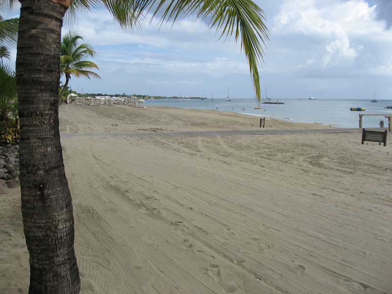 Nevis 07 098