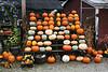 more pumpkins for halloween