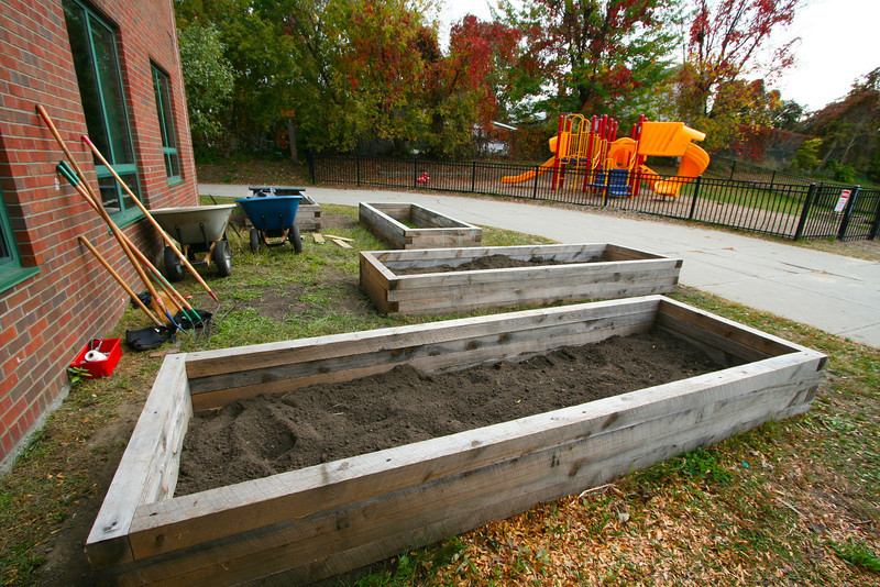 Raised beds in the back of the school.