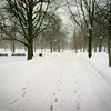 Winter in Boston Common