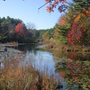 Fall scene at Greak Brook