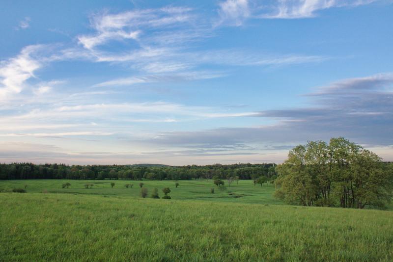 Green Fields - 127/365