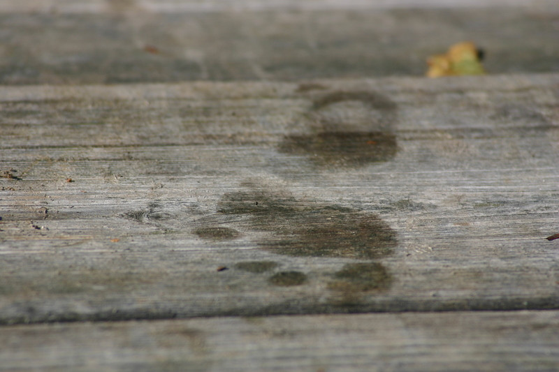 Small traces