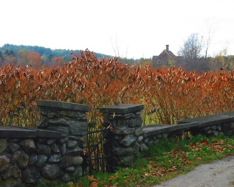 Forgotten gate