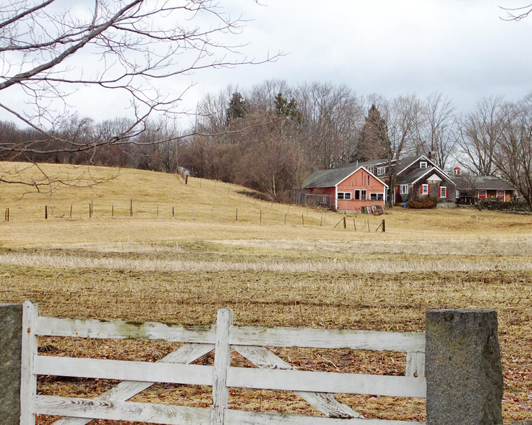 Small Southborogh Farm - 056/365