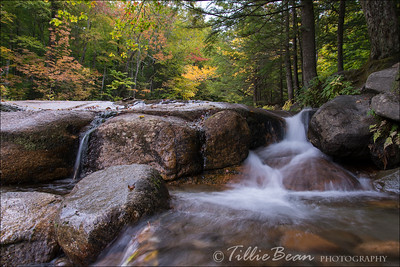 Flume Gorge, Franconia Notch State Park, White Mountains National Forest, NH, USA