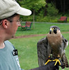 We visited the Vermont Institute of Natural Science center where they care for injured birds of prey