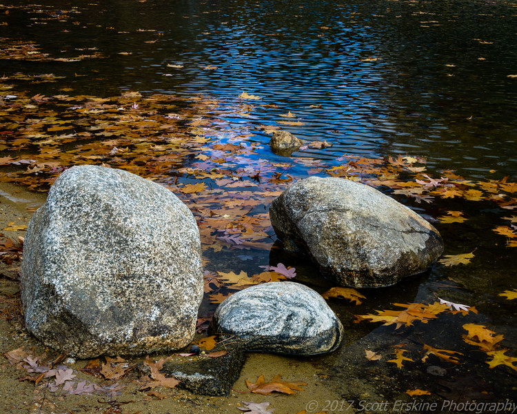 Bolders and Leaves, Walden Pond, MA