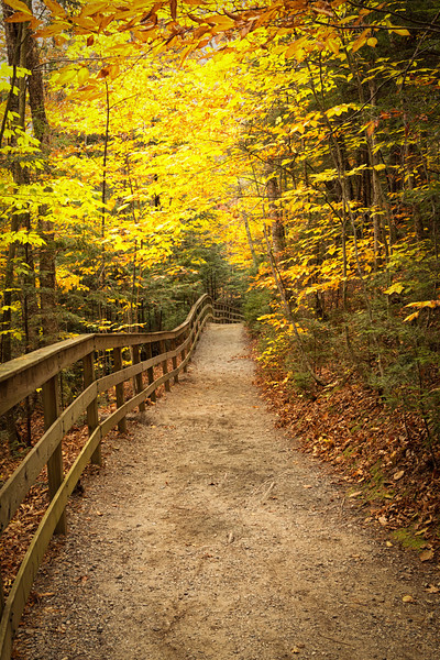 Franconia Path