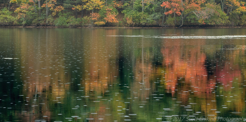 Raindrops, Silver Lake, Grafton, MA