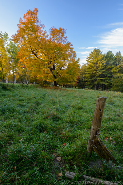 Old Fence Post, Stowe, VT