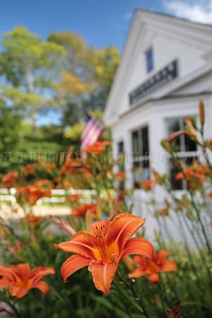 Flowers in front of an old building that housed a boot shop beginning in the mid 1800's.  The bulding was moved from a different nearby location in 2005 and now contains offices and archives for the Historical Society of Old Yarmouth. Yarmouth Port, Massachusetts, United States