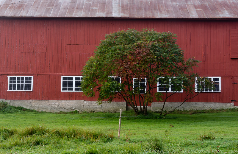 Red Barn, Stowe, Vt