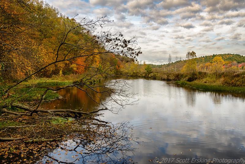 Autumn Afternoon, Rice City Pond, Uxbridge Ma