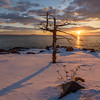 Winter Sunrise Sentinal, Acadia National Park, Maine