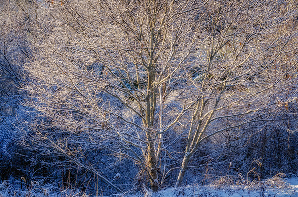Morning Storm Light, Blackstone, MA