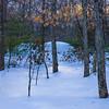 Winter Afternoon, Blackstone, Ma