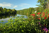 View from the Bridge of Flowers in Shelburne Falls, Massachusetts, USA