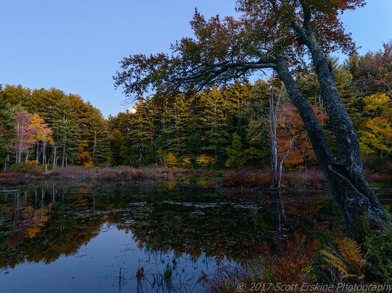 West Hill Park, Autumn Evening, Uxbridge, MA