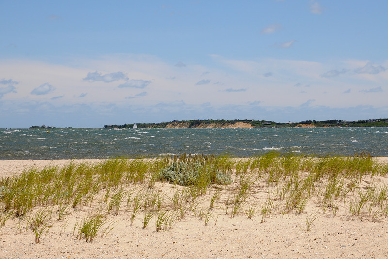 The Bluffs of Chappaquiddick MA