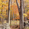 Opening in stone wall is an invitation to enter this autumn scene