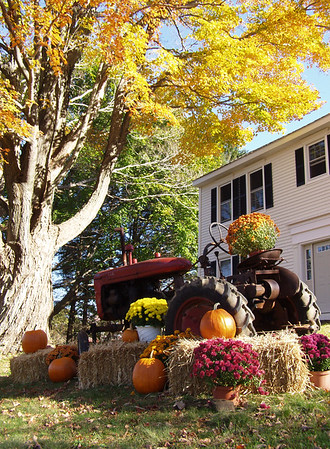 Autumn decorations on lawn of Connecticut home
