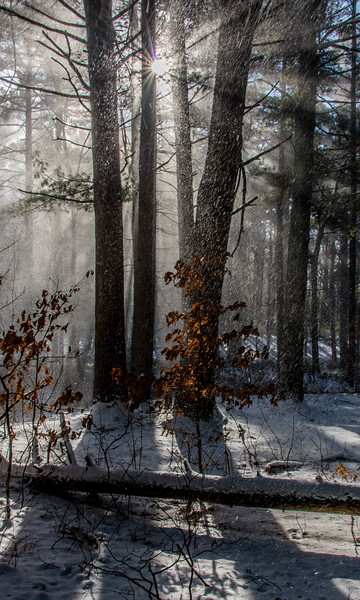 Snow Squal and Sunburst, West Hill Park, Uxbridge, MA