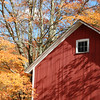 An old red barn and brilliant maple foliage on an autumn day in New England