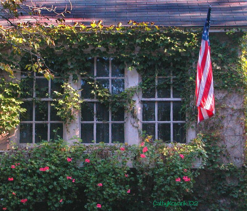 American Windows, NJ