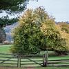 Howell Farm-4780
